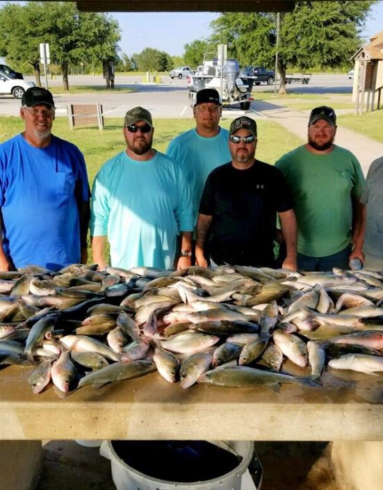 White Bass Fishing Lake Ray Roberts